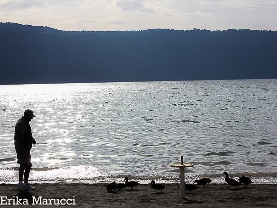 duckies2 (1 of 1)