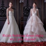 Which wedding dress style will you choose?