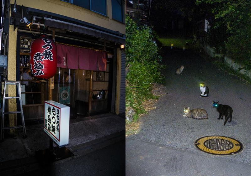 24 hours in Narita, Japan