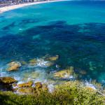 Mesmerised by the deep blue ocean